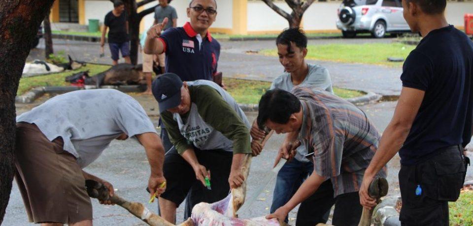 Penyelenggaraan Kurban 1439 H di FTI Universitas Bung Hatta